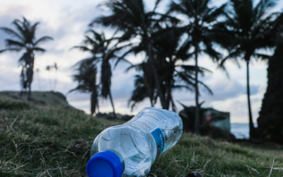 How Long Does it Take For A Plastic Bottle To Break Down?